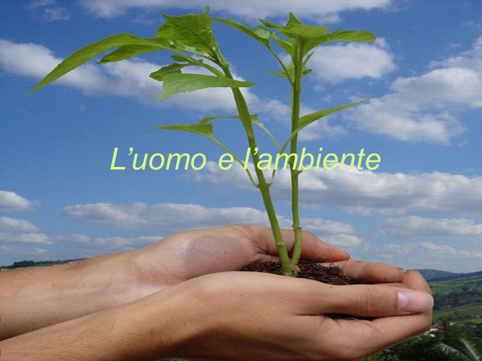 Luomo e lambiente
