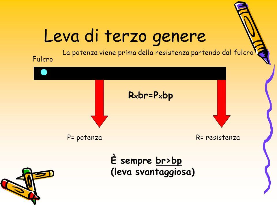 Leva di terzo genere R x br=P x bp R= resistenzaP= potenza Fulcro È sempre br>bp (leva svantaggiosa) La potenza viene prima della resistenza partendo dal fulcro