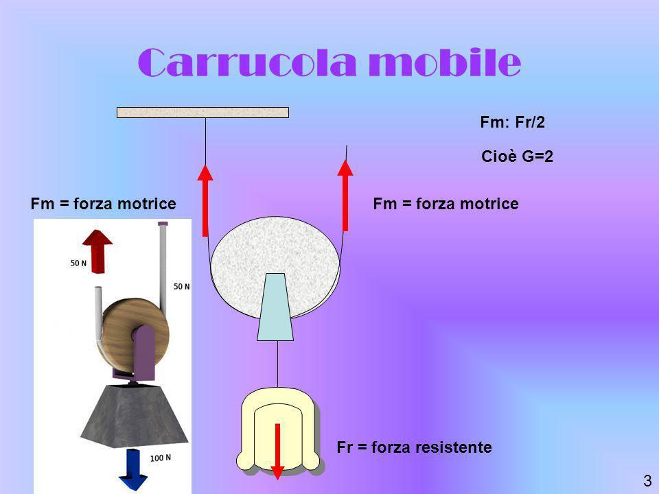Carrucola mobile Fm: Fr/2 Fm = forza motrice Fr = forza resistente Cioè G=2 3