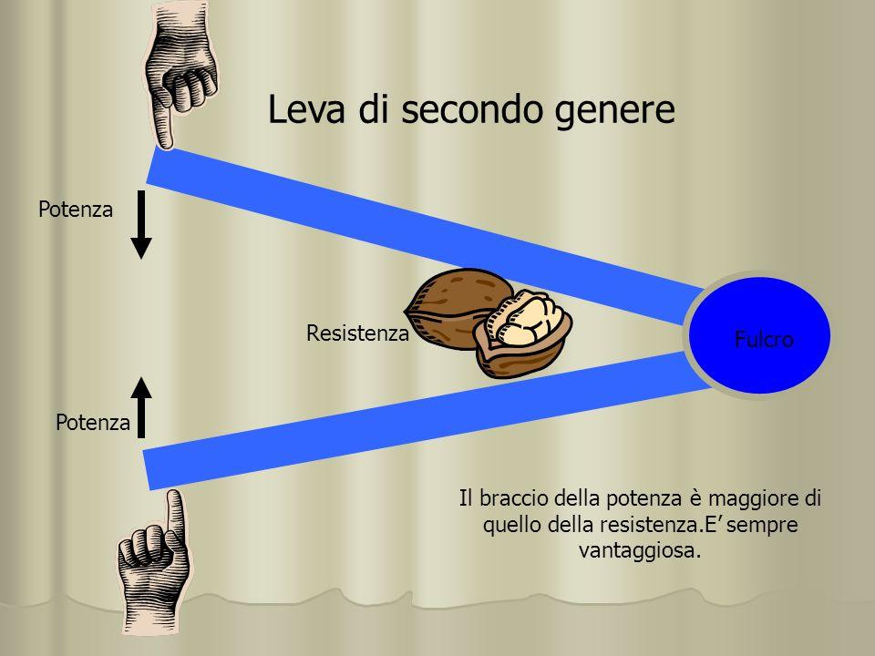 Leva di terzo genere La potenza è interposta tra fulcro e resistenza.