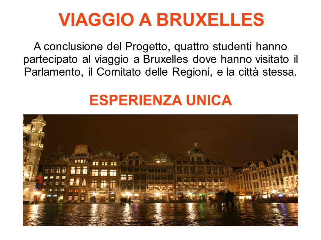 VIAGGIO A BRUXELLES A conclusione del Progetto, quattro studenti hanno partecipato al viaggio a Bruxelles dove hanno visitato il Parlamento, il Comitato delle Regioni, e la città stessa.