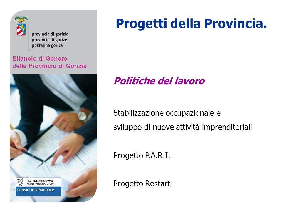Bilancio di Genere della Provincia di Gorizia Progetti della Provincia.