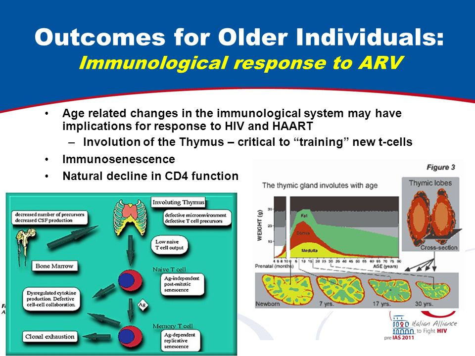 Outcomes for Older Individuals: Immunological response to ARV Age related changes in the immunological system may have implications for response to HIV and HAART –Involution of the Thymus – critical to training new t-cells Immunosenescence Natural decline in CD4 function