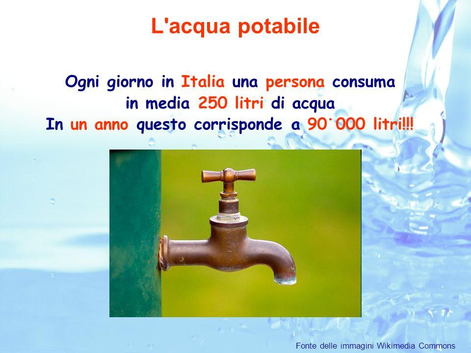 Ogni giorno in Italia una persona consuma in media 250 litri di acqua In un anno questo corrisponde a 90˙000 litri!!.