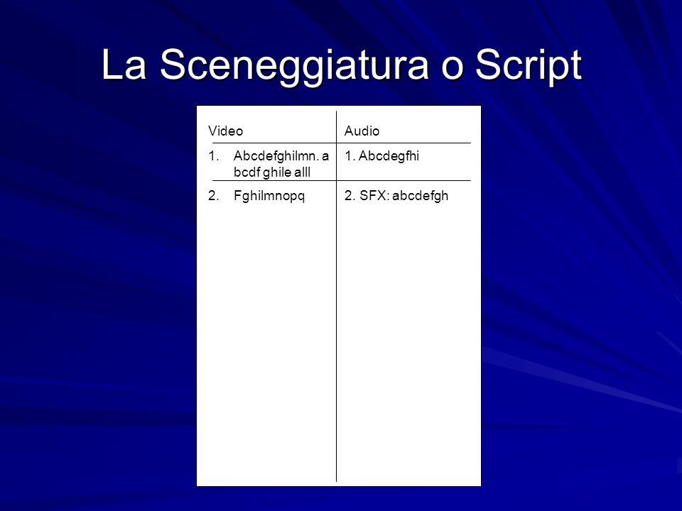 La Sceneggiatura o Script VideoAudio 1.Abcdefghilmn. a1. Abcdegfhi bcdf ghile alll 2.Fghilmnopq2. SFX: abcdefgh