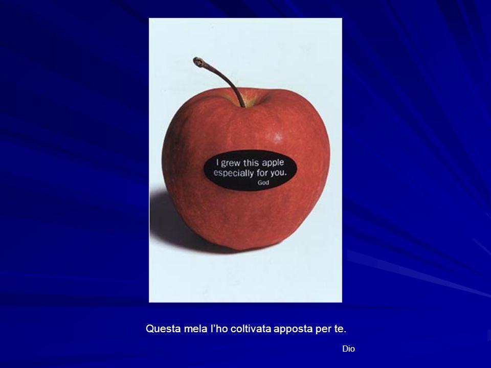 Questa mela lho coltivata apposta per te. Dio