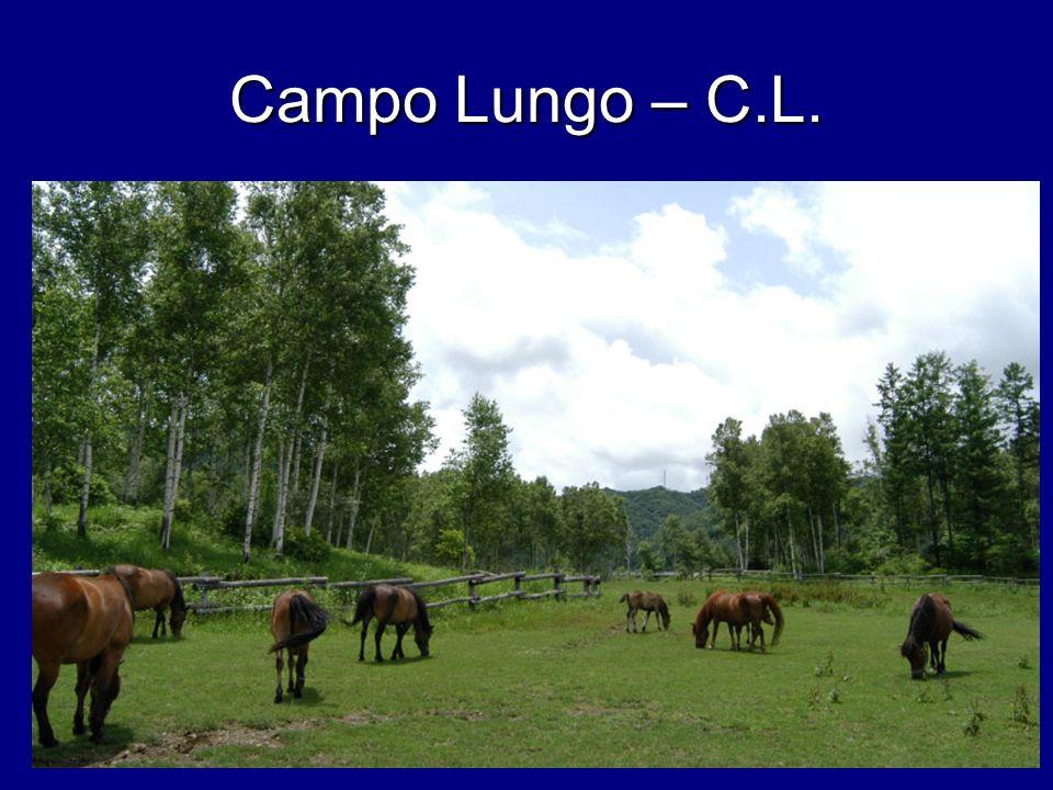 Campo Lungo – C.L.