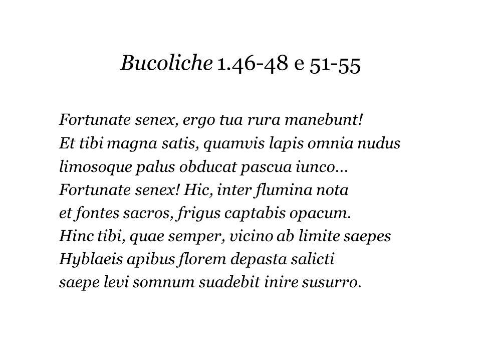 Bucoliche 1.46-48 e 51-55 Fortunate senex, ergo tua rura manebunt! Et tibi magna satis, quamvis lapis omnia nudus limosoque palus obducat pascua iunco
