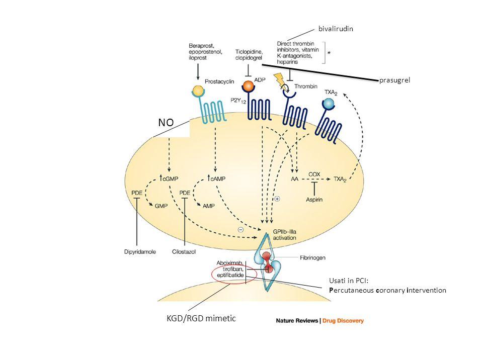 KGD/RGD mimetic bivalirudin Usati in PCI: Percutaneous coronary intervention prasugrel