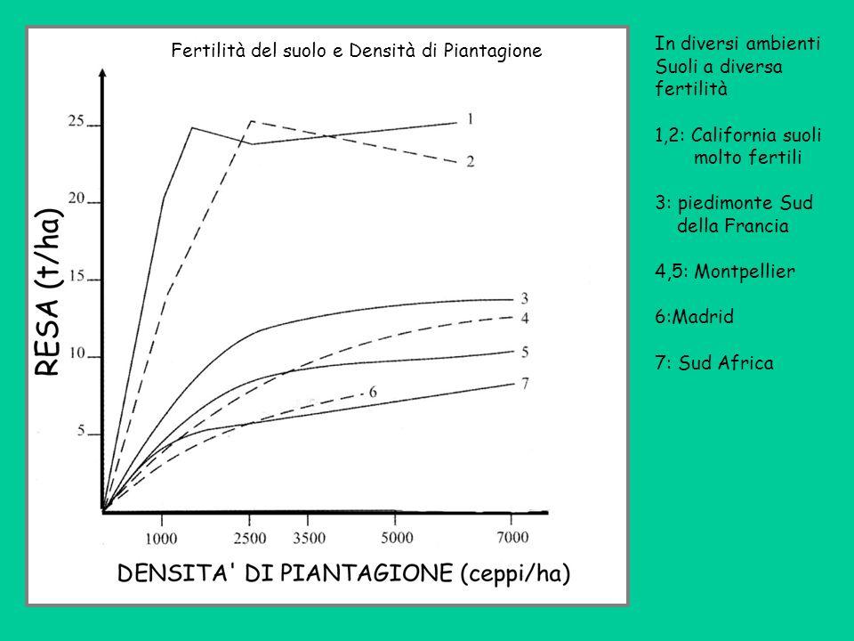 In diversi ambienti Suoli a diversa fertilità 1,2: California suoli molto fertili 3: piedimonte Sud della Francia 4,5: Montpellier 6:Madrid 7: Sud Afr