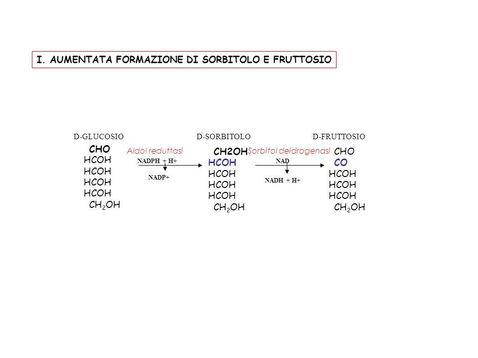CHO HCOH CH 2 OH HCOH CH 2 OH CHO CO HCOH CH 2 OH D-GLUCOSIOD-SORBITOLOD-FRUTTOSIO NADPH + H+NAD NADP+ NADH + H+ Aldol reduttasiSorbitol deidrogenasi