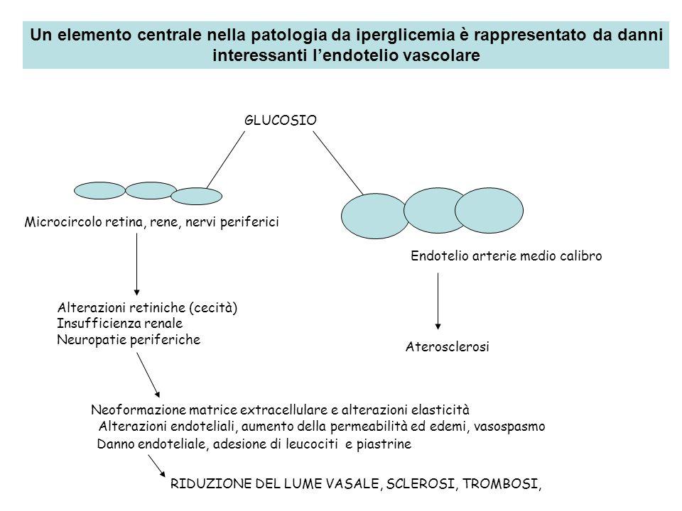 GLUCOSIO Microcircolo retina, rene, nervi periferici Alterazioni retiniche (cecità) Insufficienza renale Neuropatie periferiche Endotelio arterie medi