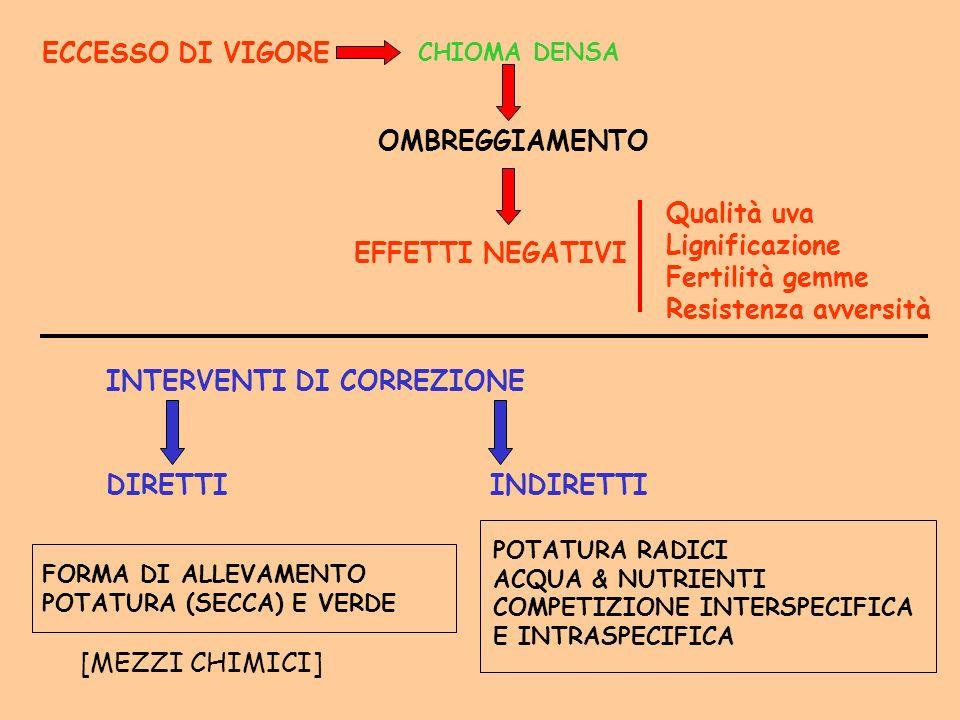 ECCESSO DI VIGORE OMBREGGIAMENTO CHIOMA DENSA EFFETTI NEGATIVI Qualità uva Lignificazione Fertilità gemme Resistenza avversità INTERVENTI DI CORREZION