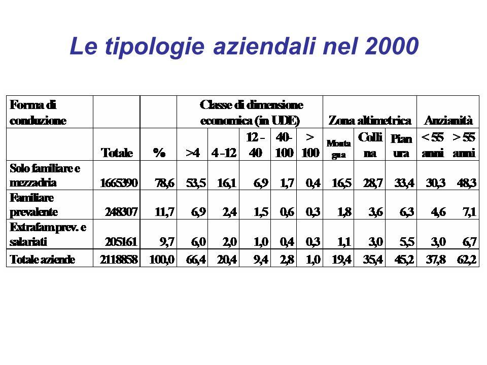 Le tipologie aziendali nel 2000