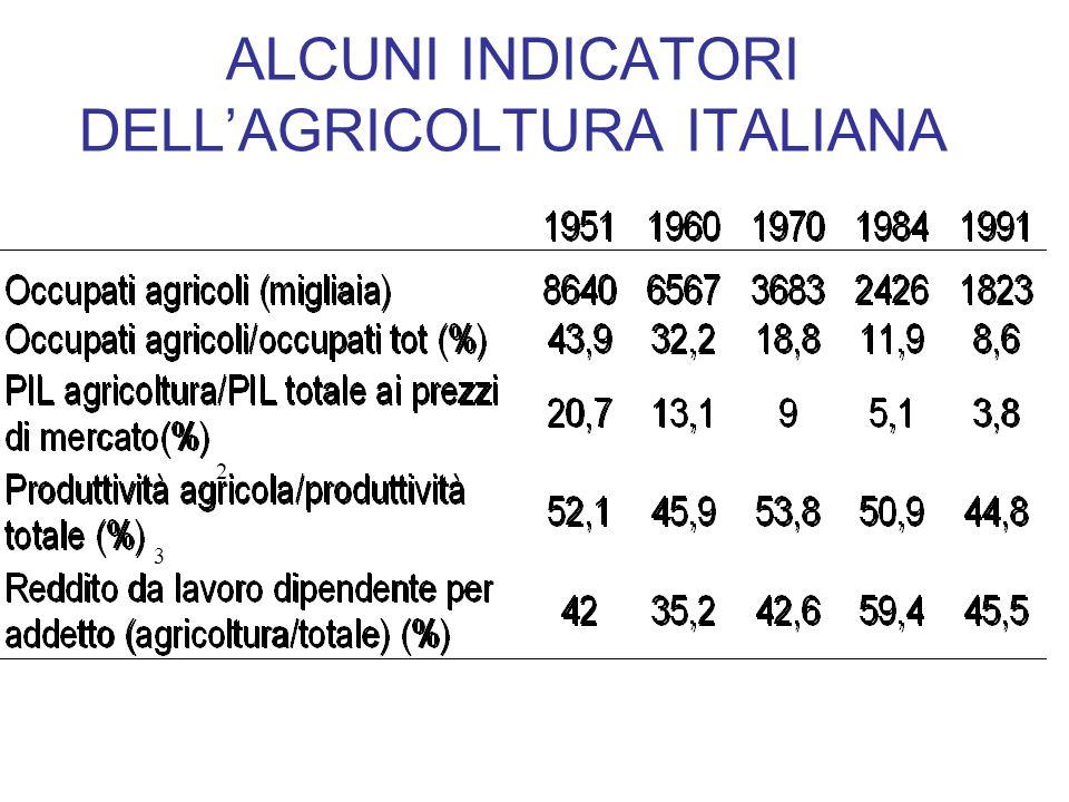 ALCUNI INDICATORI DELLAGRICOLTURA ITALIANA 2 3