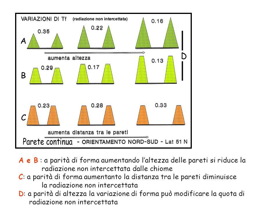 A e B : a parità di forma aumentando laltezza delle pareti si riduce la radiazione non intercettata dalle chiome C: a parità di forma aumentanto la distanza tra le pareti diminuisce la radiazione non intercettata D: a parità di altezza la variazione di forma può modificare la quota di radiazione non intercettata