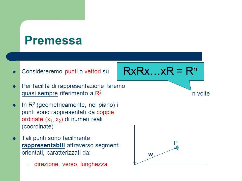 Premessa Considereremo punti o vettori su Per facilità di rappresentazione faremo quasi sempre riferimento a R 2 In R 2 (geometricamente, nel piano) i