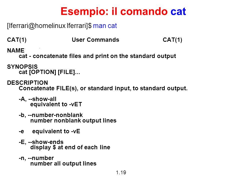 1.19 Esempio: il comando cat [lferrari@homelinux lferrari]$ man cat CAT(1) User Commands CAT(1) NAME cat - concatenate files and print on the standard