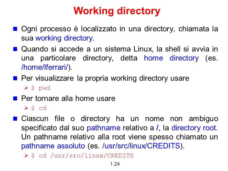 1.24 Working directory Ogni processo è localizzato in una directory, chiamata la sua working directory. Quando si accede a un sistema Linux, la shell