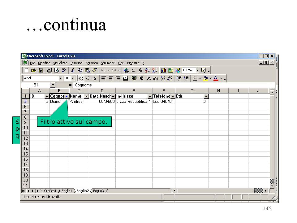 145 …continua Selezionare il database o posizionarsi su una cella qualsiasi di esso.