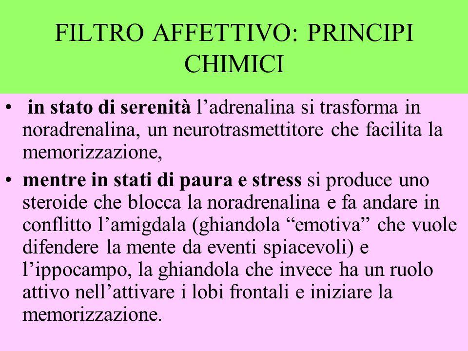 . MLT Filtro affettivo informazione apprendimento acquisizione MBT FILTRO AFFETTIVO