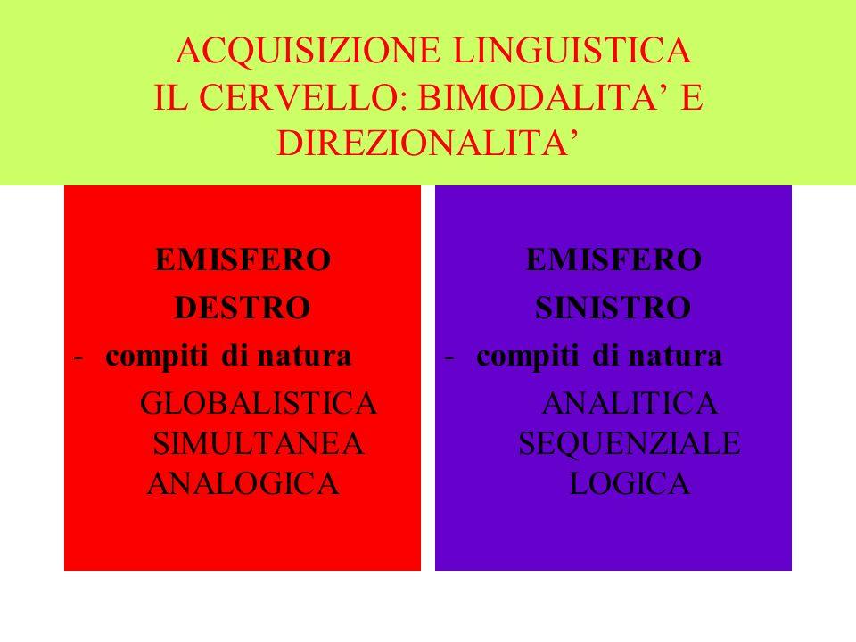 ACQUISIZIONE LINGUISTICA IL CERVELLO: BIMODALITA E DIREZIONALITA EMISFERO DESTRO -compiti di natura GLOBALISTICA SIMULTANEA ANALOGICA EMISFERO SINISTRO -compiti di natura ANALITICA SEQUENZIALE LOGICA