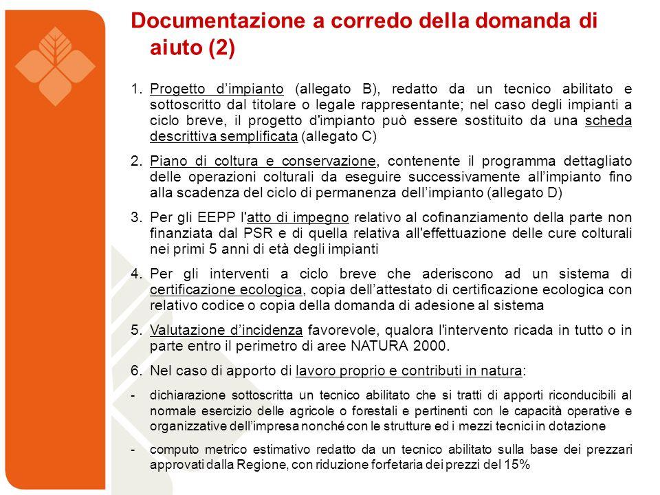 Documentazione a corredo della domanda di aiuto (2) 1. Progetto dimpianto (allegato B), redatto da un tecnico abilitato e sottoscritto dal titolare o
