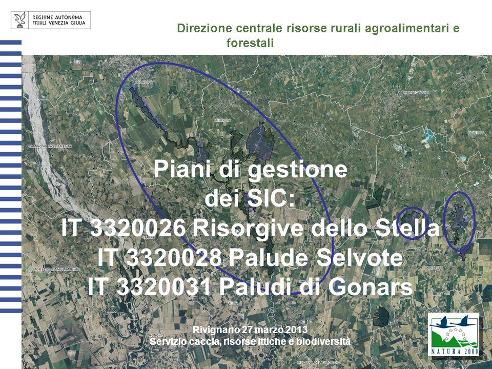 Direzione centrale risorse rurali agroalimentari e forestali Piani di gestione dei SIC: IT 3320026 Risorgive dello Stella IT 3320028 Palude Selvote IT