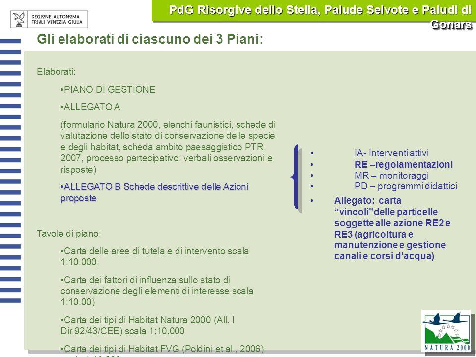 Gli elaborati di ciascuno dei 3 Piani: Elaborati: PIANO DI GESTIONE ALLEGATO A (formulario Natura 2000, elenchi faunistici, schede di valutazione dell