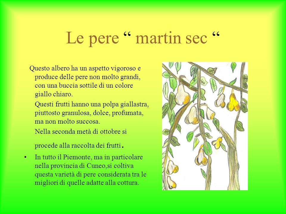 Le pere martin sec Questo albero ha un aspetto vigoroso e produce delle pere non molto grandi, con una buccia sottile di un colore giallo chiaro.