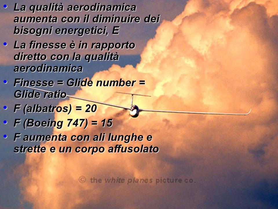 La qualità aerodinamica aumenta con il diminuire dei bisogni energetici, E La qualità aerodinamica aumenta con il diminuire dei bisogni energetici, E La finesse è in rapporto diretto con la qualità aerodinamica La finesse è in rapporto diretto con la qualità aerodinamica Finesse = Glide number = Glide ratio Finesse = Glide number = Glide ratio F (albatros) = 20 F (albatros) = 20 F (Boeing 747) = 15 F (Boeing 747) = 15 F aumenta con ali lunghe e strette e un corpo affusolato F aumenta con ali lunghe e strette e un corpo affusolato