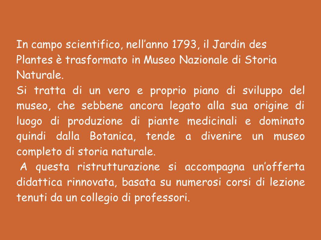 In campo scientifico, nellanno 1793, il Jardin des Plantes è trasformato in Museo Nazionale di Storia Naturale.