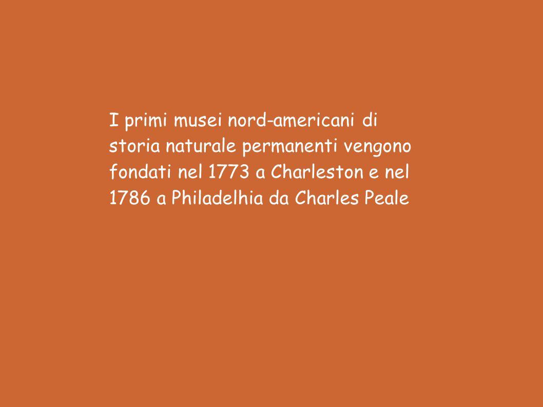I primi musei nord-americani di storia naturale permanenti vengono fondati nel 1773 a Charleston e nel 1786 a Philadelhia da Charles Peale