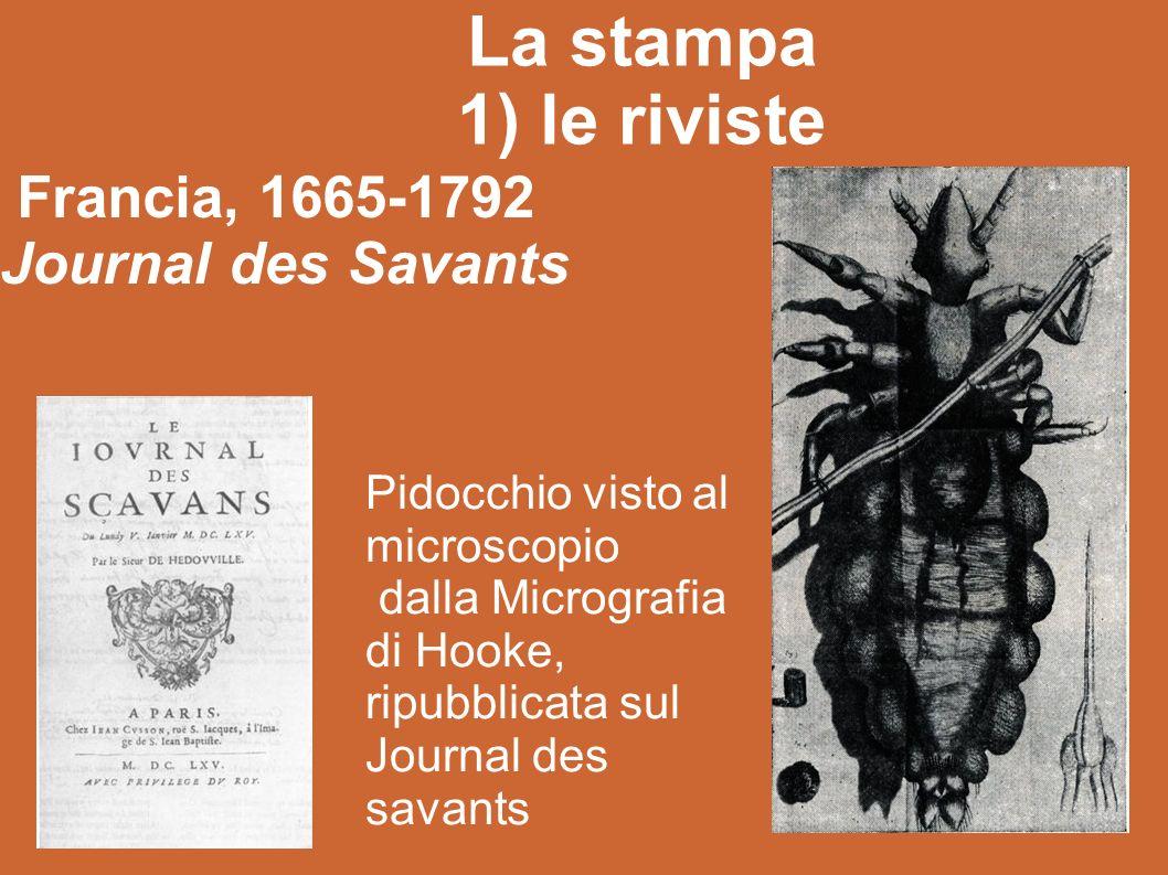 La stampa 1) le riviste Francia, 1665-1792 Journal des Savants Pidocchio visto al microscopio dalla Micrografia di Hooke, ripubblicata sul Journal des savants