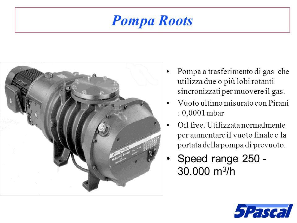 Pompa Roots Pompa a trasferimento di gas che utilizza due o più lobi rotanti sincronizzati per muovere il gas. Vuoto ultimo misurato con Pirani : 0,00