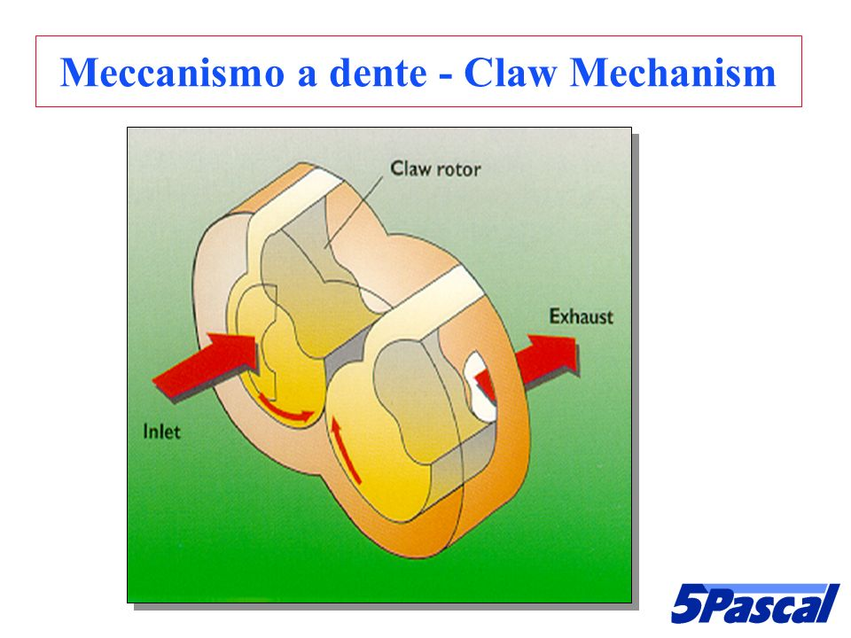 Meccanismo a dente - Claw Mechanism