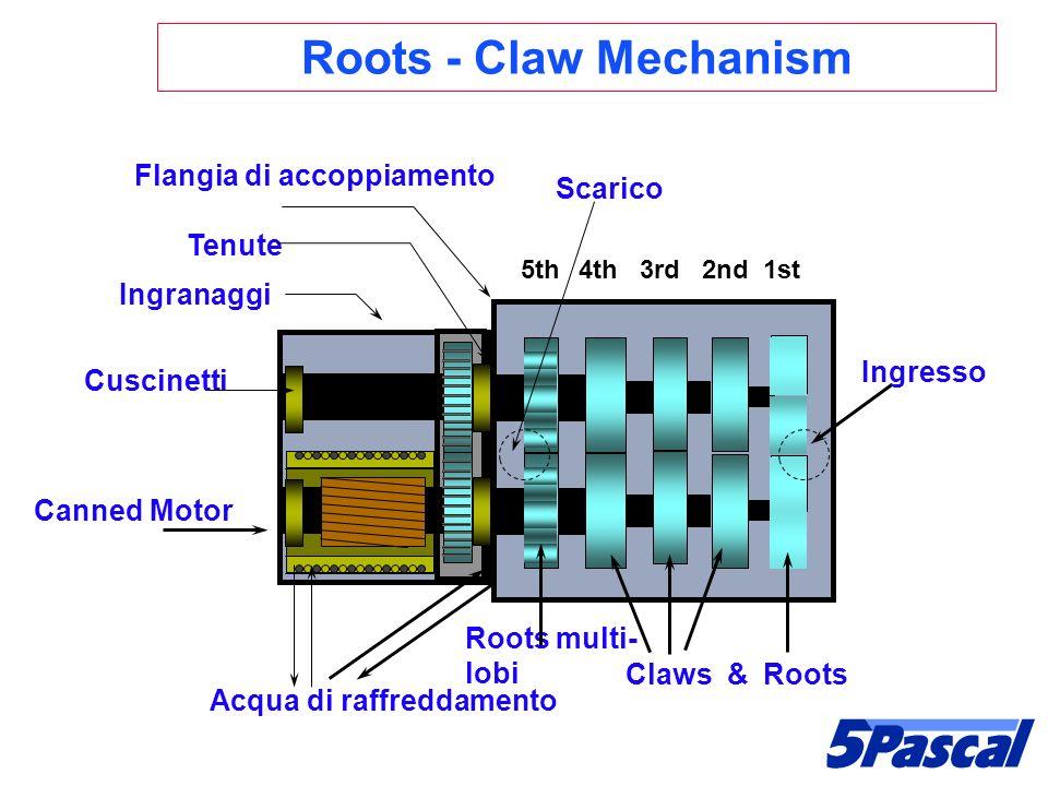 Canned Motor Claws & Roots Roots multi- lobi Acqua di raffreddamento Ingranaggi Flangia di accoppiamento 5th 4th 3rd 2nd 1st Cuscinetti Tenute Roots -