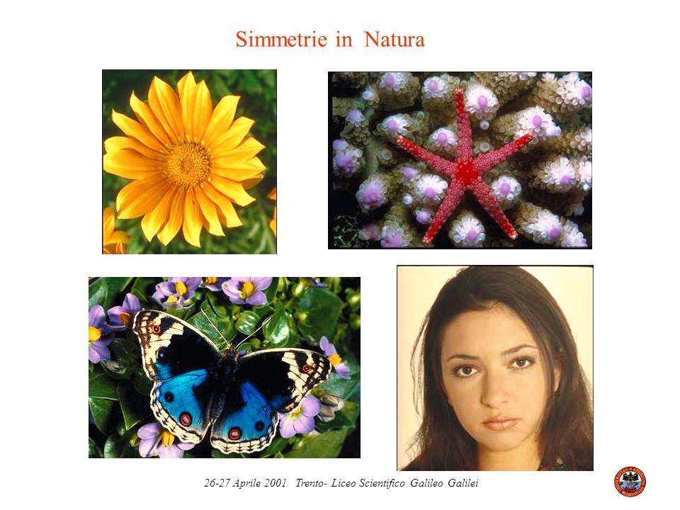 26-27 Aprile 2001 Trento- Liceo Scientifico Galileo Galilei Simmetrie in Natura