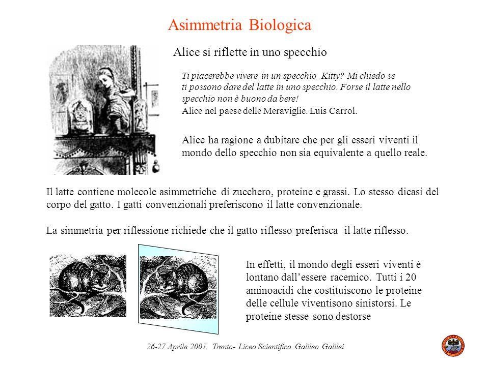 26-27 Aprile 2001 Trento- Liceo Scientifico Galileo Galilei Asimmetria Biologica Alice si riflette in uno specchio Ti piacerebbe vivere in un specchio