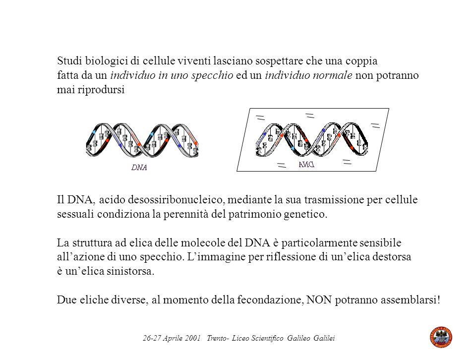 26-27 Aprile 2001 Trento- Liceo Scientifico Galileo Galilei Studi biologici di cellule viventi lasciano sospettare che una coppia fatta da un individu