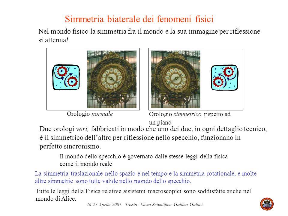 26-27 Aprile 2001 Trento- Liceo Scientifico Galileo Galilei Simmetria biaterale dei fenomeni fisici Il mondo dello specchio è governato dalle stesse l