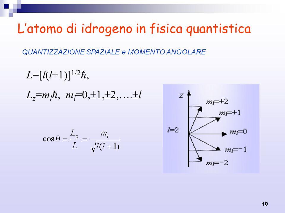 10 Latomo di idrogeno in fisica quantistica L=[l(l+1)] 1/2 ħ, L z =m l ħ, m l =0, 1, 2,…. l QUANTIZZAZIONE SPAZIALE e MOMENTO ANGOLARE