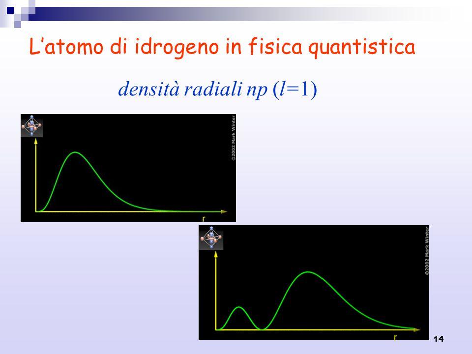 14 Latomo di idrogeno in fisica quantistica densità radiali np (l=1)