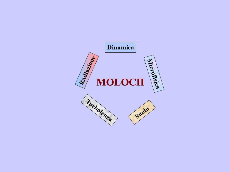 Dinamica Microfisica Suolo Turbolenza Radiazione MOLOCH