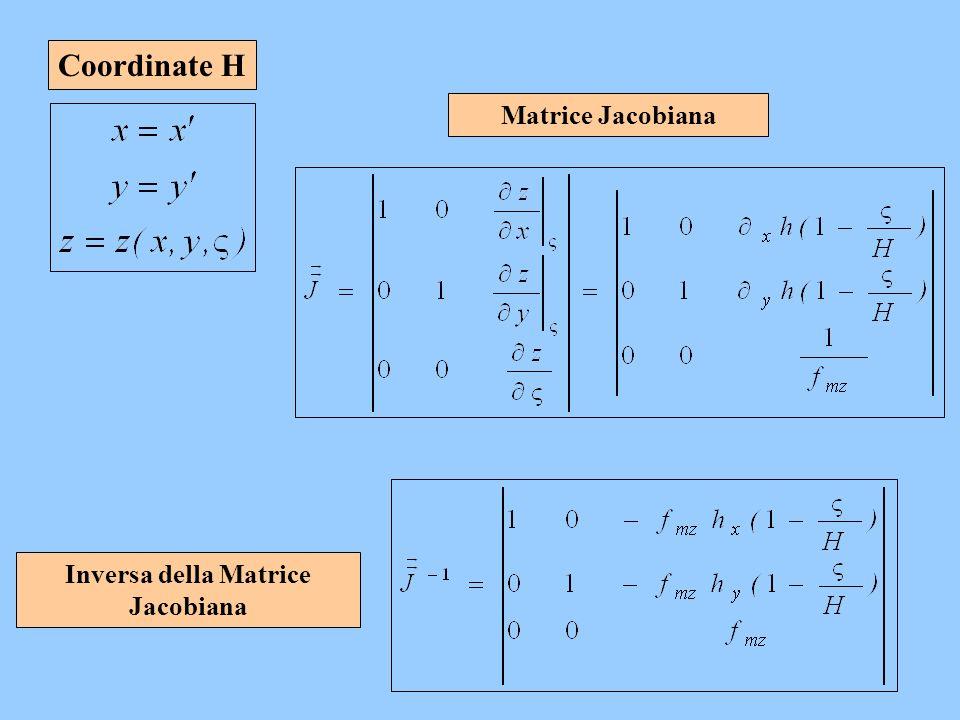 Coordinate H Matrice Jacobiana Inversa della Matrice Jacobiana