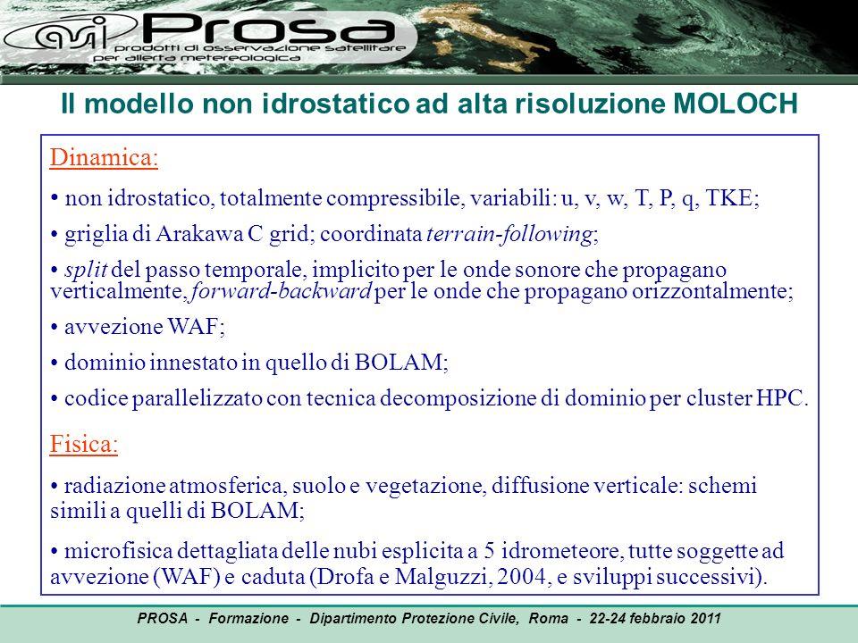 OUTPUT PROSA - Formazione - Dipartimento Protezione Civile, Roma - 22-24 febbraio 2011 Dinamica: non idrostatico, totalmente compressibile, variabili: