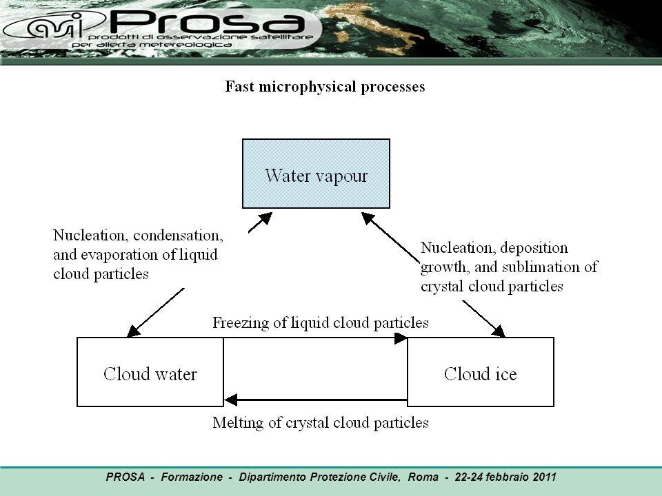 OUTPUT PROSA - Formazione - Dipartimento Protezione Civile, Roma - 22-24 febbraio 2011