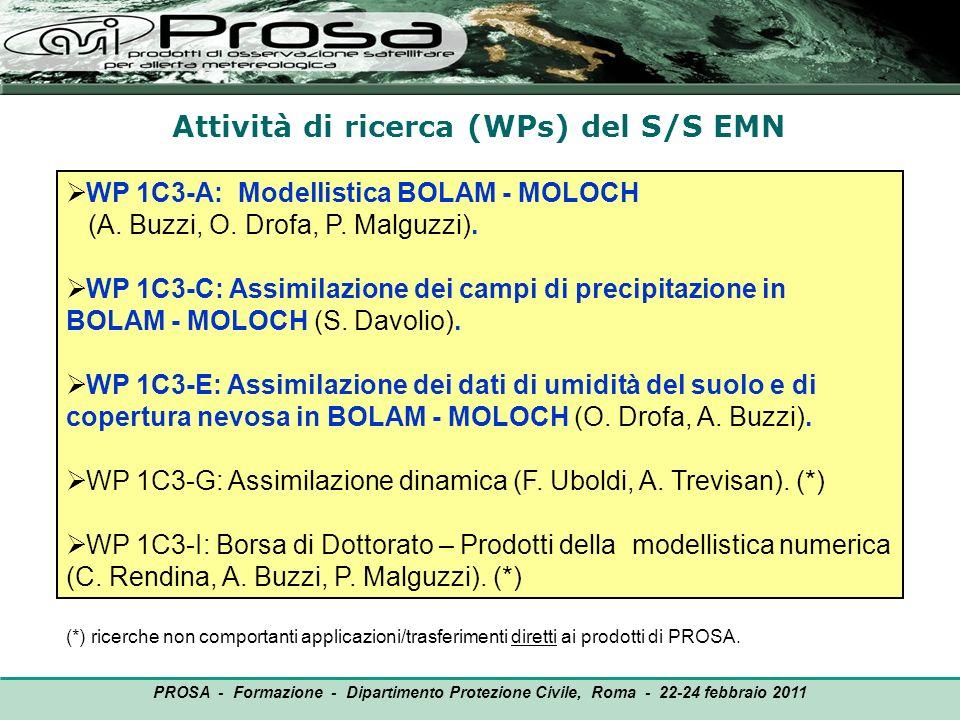 Attività di ricerca (WPs) del S/S EMN OUTPUT WP 1C3-A: Modellistica BOLAM - MOLOCH (A. Buzzi, O. Drofa, P. Malguzzi). WP 1C3-C: Assimilazione dei camp