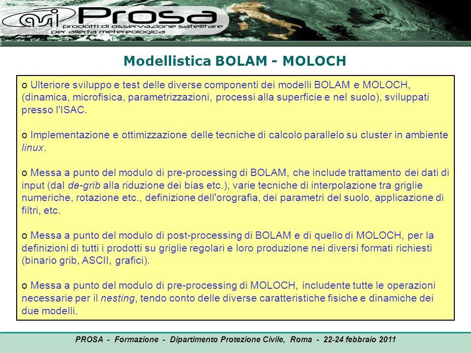 Modellistica BOLAM - MOLOCH OUTPUT o Ulteriore sviluppo e test delle diverse componenti dei modelli BOLAM e MOLOCH, (dinamica, microfisica, parametriz