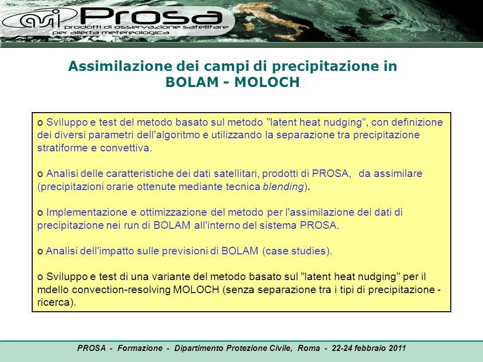 Assimilazione dei campi di precipitazione in BOLAM - MOLOCH OUTPUT o Sviluppo e test del metodo basato sul metodo